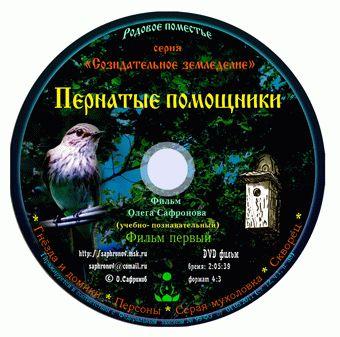 pp_disk