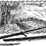 Судогодский плоскорез