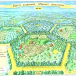 Грамотный план для живой изгороди