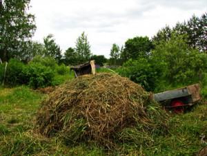 kompost_kucha