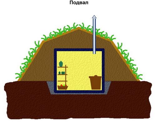 хранение овощей и фруктов: подвал